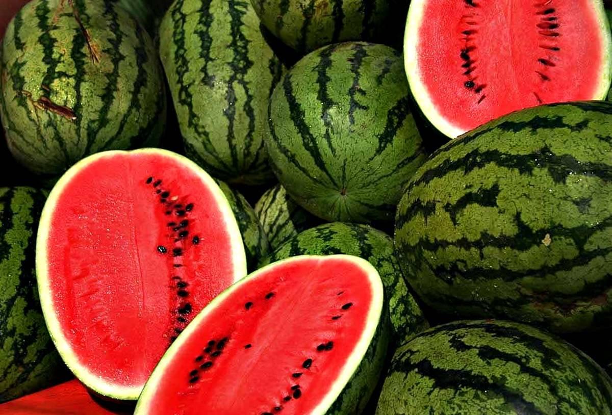 Kako napraviti pijanu lubenicu?
