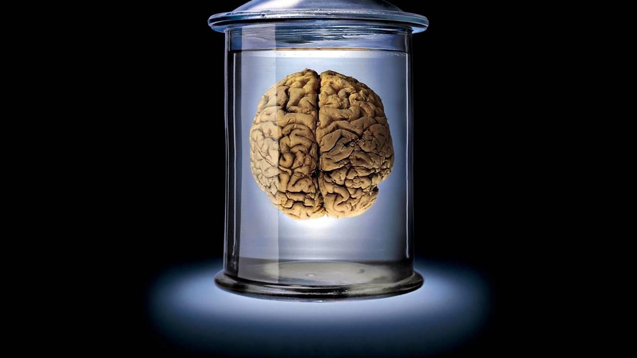 Zašto mozak bira istinu?