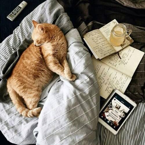 Zašto je korisno i zanimljivo voditi dnevnik