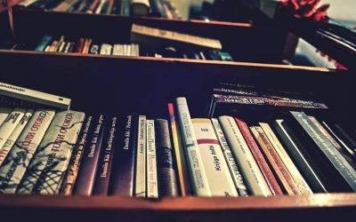 Književnost u XXI veku: klasična vs dečija