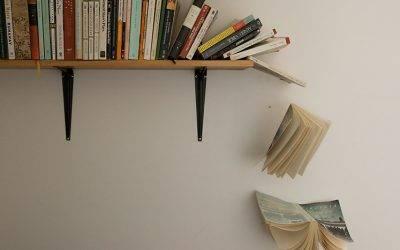 """""""Trivijalna književnost""""- čitati ili ne čitati?"""