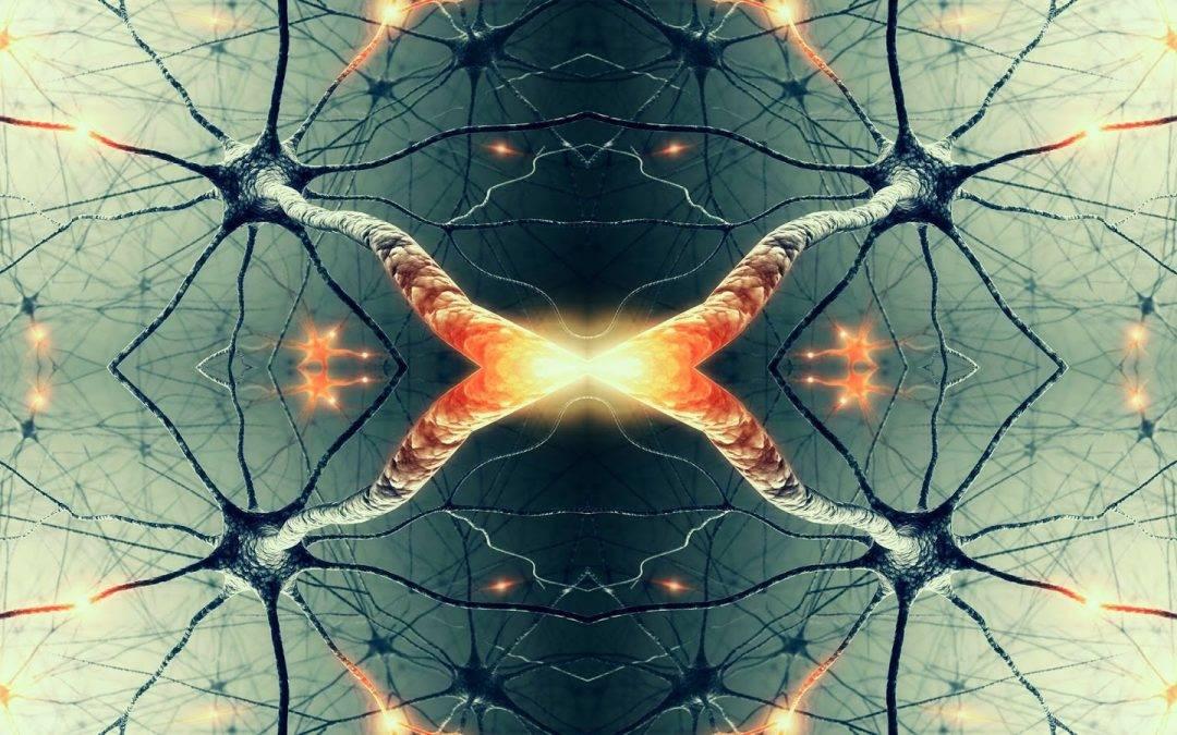 Odraz uma: Ogledalo u našim neuronima