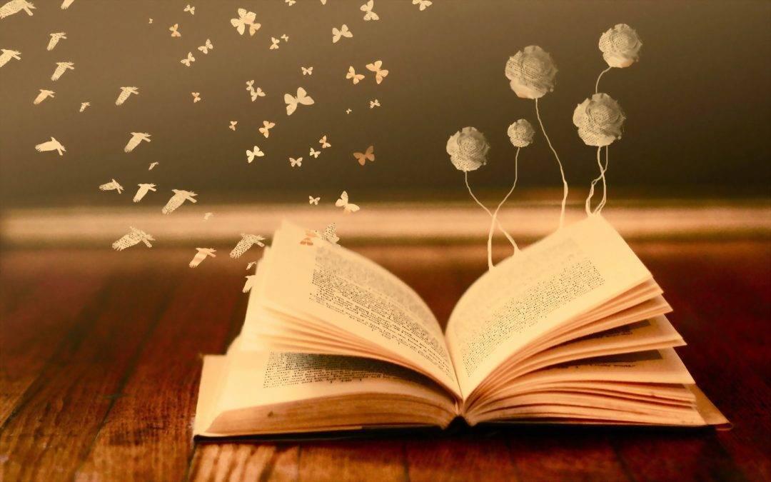 Knjiga kao prenosivi izvor magije
