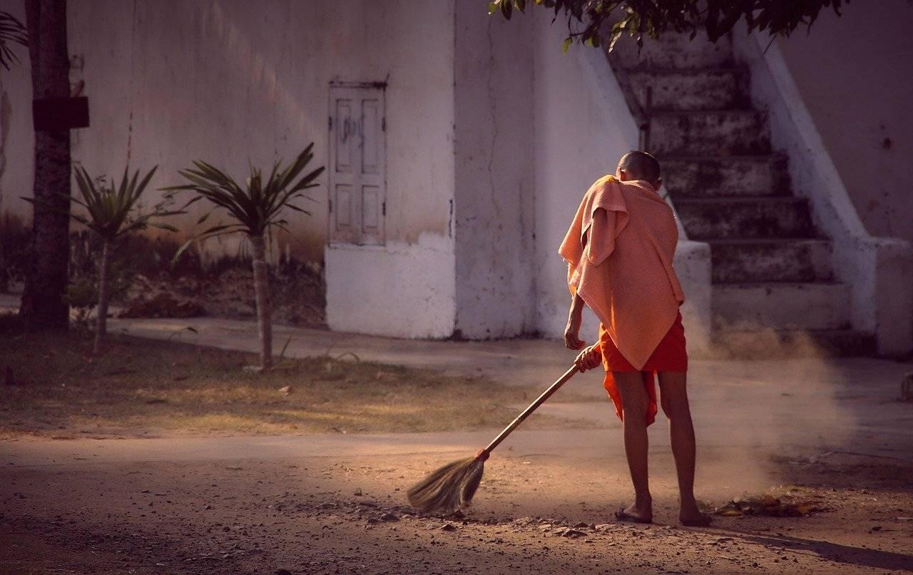 čišćenje i karantin