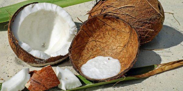 Šta sve kokos može da učini za vaše zdravlje?